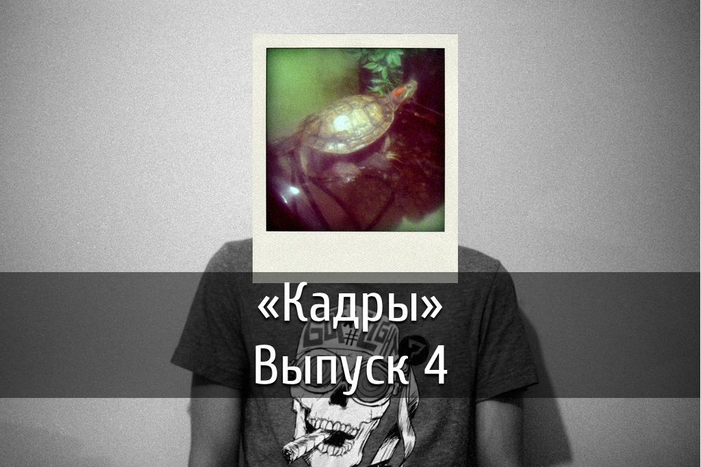 poster-kadry-4